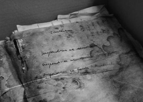 peter.manuscript
