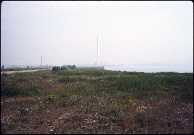 Fig. 5. Leslie Street Spit, looking east, Toronto, 1985 (ca). City of Toronto Archives, Fonds 200, Series 1465, File 148, Item 7.